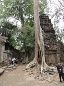 The tree built right into Bayon Temple